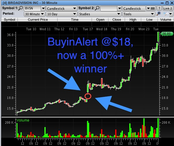 BuyinAlerts 100%+ Winner